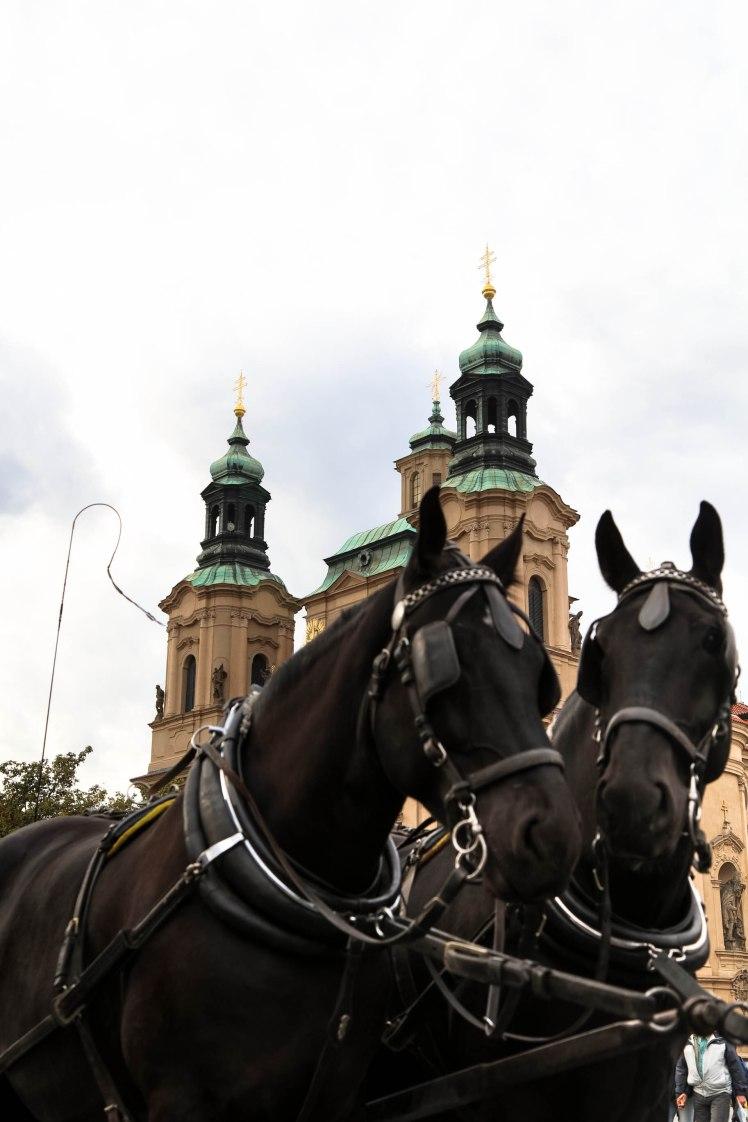 Prague'17 (9 of 20)